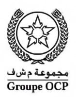 logo-OCP